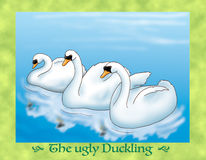 The ugly duckling 16 beautiful swans Royalty Free Stock Image