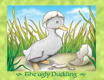 The ugly duckling COVER Royalty Free Stock Photo