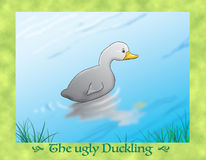 The ugly duckling 15 escaping again Stock Photos