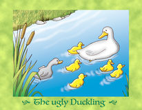 The ugly duckling 3 family Stock Image