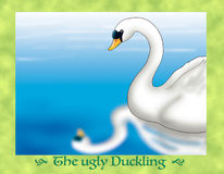 The ugly duckling 22 recognize himself as a swan Stock Image
