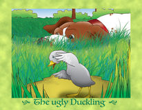 The ugly duckling 11 scared duckling Royalty Free Stock Images