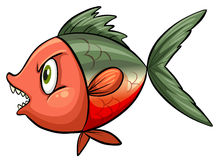 Ugly fish Stock Images