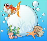 An ugly fish under the sea near the pearls Royalty Free Stock Photo