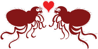 Ugly fleas madly falling in love Stock Photo