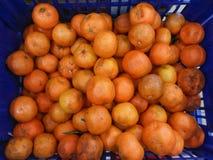 Ugly mandarin oranges Royalty Free Stock Photo