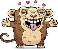 Ugly Monkey Hug Stock Photos