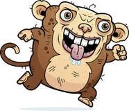 Ugly Monkey Running Royalty Free Stock Image