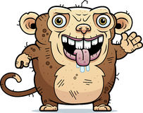 Ugly Monkey Waving Royalty Free Stock Image