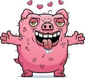 Ugly Pig Hug Royalty Free Stock Image