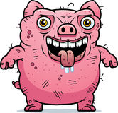 Ugly Pig Standing Royalty Free Stock Image