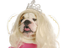 Ugly princess Royalty Free Stock Image