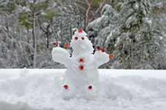 Ugly snow puppet. With tree background Royalty Free Stock Images
