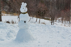 Ugly snowman be built from kid. Royalty Free Stock Images