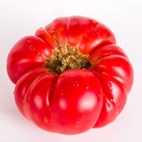 Ugly tomatos Royalty Free Stock Photo