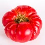 Ugly tomatos. On white background Royalty Free Stock Photo
