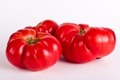 Ugly tomatos. On white background Stock Photos