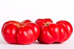 Ugly tomatos. On white background Stock Images