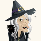 Ugly witch. Full vector cartoon Royalty Free Stock Photo