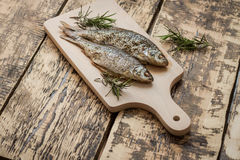 Ugn-bakad fisk Royaltyfri Foto