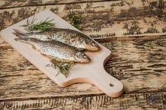 Ugn-bakad fisk Royaltyfri Fotografi