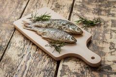 Ugn-bakad fisk Royaltyfria Bilder