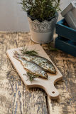 Ugn-bakad fisk Arkivfoton