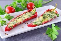Ugnen lagade mat röd paprika som var välfylld med ost, vitlök och örter på en vit platta med den parcleyen och körsbärsröda tomat Royaltyfri Fotografi
