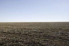 Ugoru śródpolny przygotowywający dla zasadzać nowej uprawy Fotografia Stock