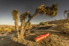 UGQ onderaan Dekbed in Joshua Tree National Park stock fotografie