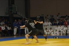 Uguagliare di arti marziali Fotografia Stock