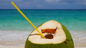 UHD closeup of the coconut stock footage
