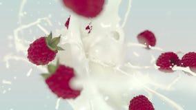 UHD-de explosie van de yoghurtframboos stock footage