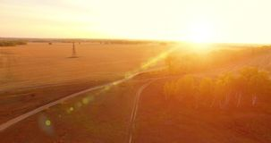 UHD 4K鸟瞰图 在黄色农村领域和土路的空中飞行 股票视频