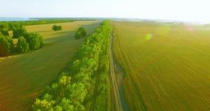 UHD 4K鸟瞰图 在绿色和黄色麦子农村领域和林木线的低飞行 股票录像