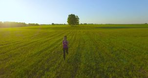 UHD 4K aerial view. Low altitude flight in front of sporty woman at rural field. UHD 4K aerial view. Low altitude flight in front of sporty woman at green and stock footage