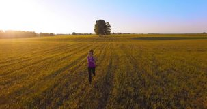 UHD 4K aerial view. Low altitude flight in front of sporty woman at rural field. UHD 4K aerial view. Low altitude flight in front of sporty woman at green and stock video