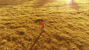 Flight over sporty man running at perfect green grass rural meadow offroad. Sunset in mountain. UHD 4K aerial view. Low altitude flight near sporty man running stock video