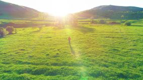 Flight over sport man at perfect green grass meadow. Sunset in mountain. UHD 4K aerial view. Low altitude flight over sport man at perfect green grass meadow stock video