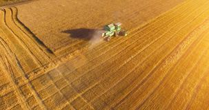 UHD 4K aerial view. Low flight over combine harvester gathers the wheat at yellow rural field. Sunny summer day. Sun rays on horizon. Horizontal movement stock video footage