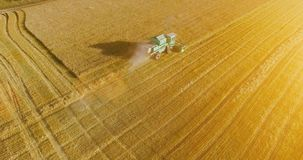 UHD 4K aerial view. Low flight over combine harvester gathers the wheat at yellow rural field. Sunny summer day. Sun rays on horizon. Horizontal movement stock footage