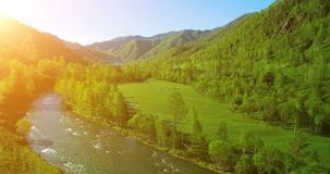UHD 4K aerial view. Low flight over fresh cold mountain river, meadow and road at sunny summer morning. stock video