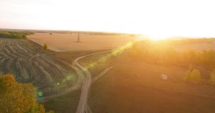 UHD 4K aerial view. Mid-air flight over yellow rural field and dirt road stock video