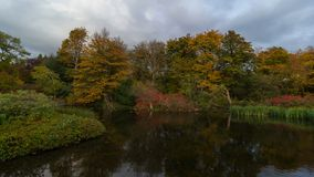 UHD 4k Time Lapse movie of dark moving clouds over pond water reflection with fall autumn colors in Crystal Springs Garden 4096x23 stock video footage
