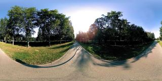 UHD 4K 360 VR virtual reality of a city park recreation area. Trees and green grass at autumn or summer day. Path and sun rays stock video footage