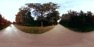 UHD 4K 360 VR virtual reality of a city park recreation area. Trees and green grass at autumn or summer day. Path and sun rays stock video
