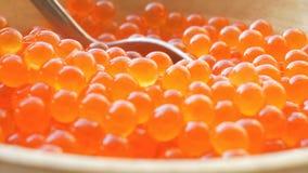UHD macro of salmon caviar. Fresh red salmon caviar in UHD stock video
