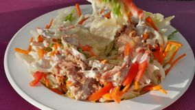 UHD shot of the tuna salad stock footage