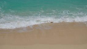 UHD sparato del litorale tropicale video d archivio