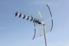Uhf-antenn Fotografering för Bildbyråer